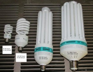 CFL sizes compared
